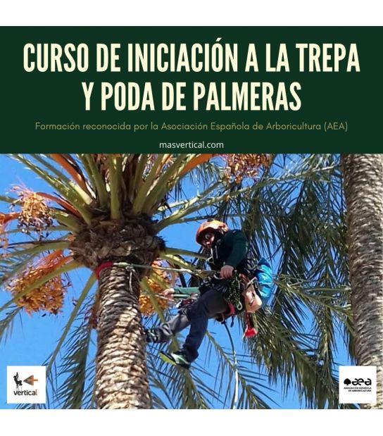 CURSO DE INICIACIÓN A LA TREPA Y PODA DE PALMERAS.
