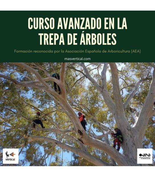 CURSO AVANZADO EN LA TREPA DE ÁRBOLES