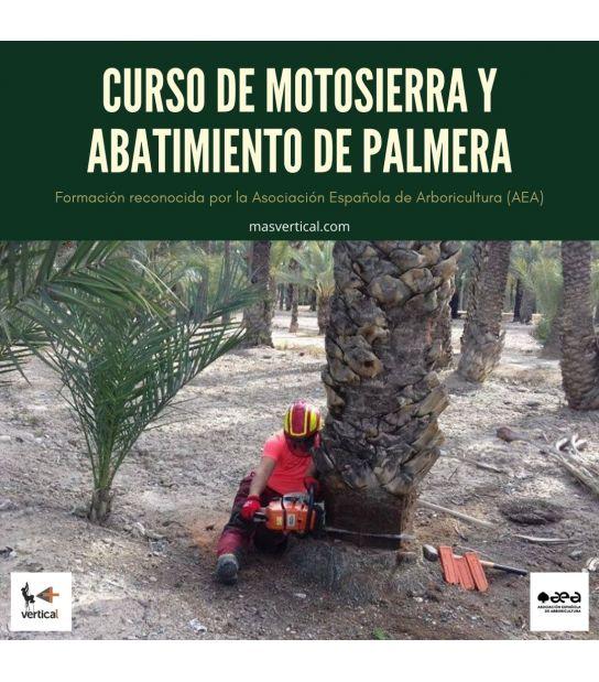 CURSO DE MOTOSIERRA Y ABATIMIENTO DE PALMERA